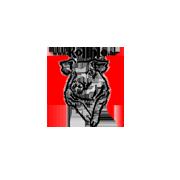 kolinje-logo